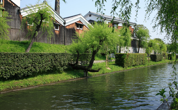 京都の食文化を発展させた 京都伏見の水